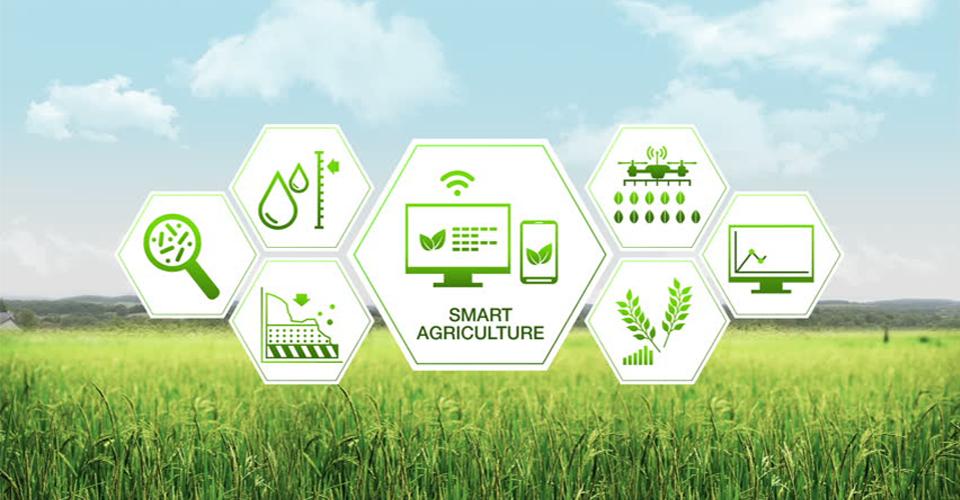 Viện ISB_Ứng dụng Big Data trong nông nghiệp