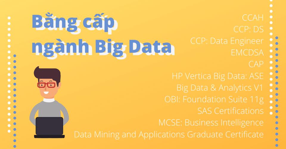 VienISB_bang-cap-nganh-big-data-1